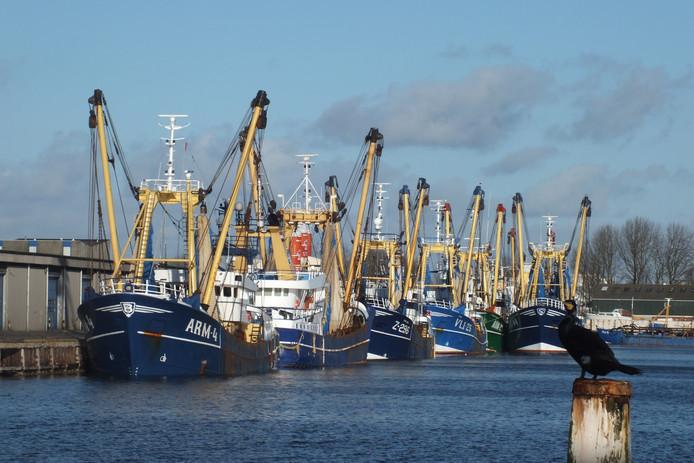 De Vlissings-Arnemuidse vissersvloot in Vlissingen.