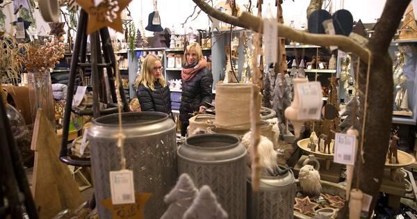 Sinterklaas is nog niet in het land maar de intratuin in for Intratuin zutphen