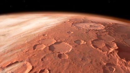 Opnieuw bewijs voor leven op Mars? Zeldzame regenbui doet beestjes ontwaken