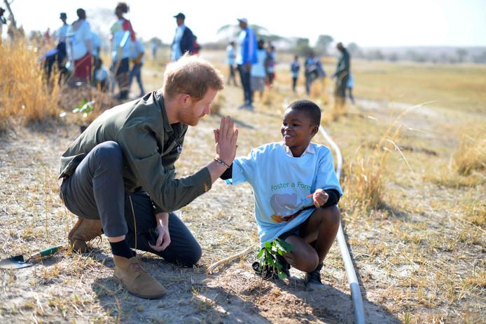 Le prince Harry avec un écolier, en marge d'une plantation d'arbres, au Botswana