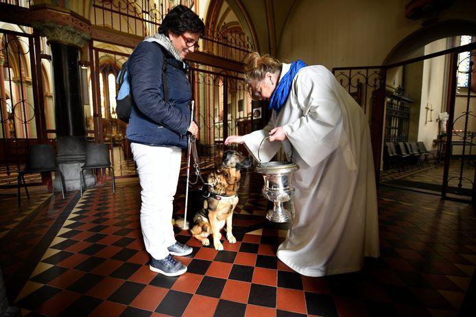AD Groene Hart; 04-10-2017; Pastoor Jannekke Stam zegent hond Junta (9) in, op het Feest van Franciscus, eigenaresse Katerina Rikkers is hier erg blij mee, want Junta gaat volgend jaar met pensioen. RB004