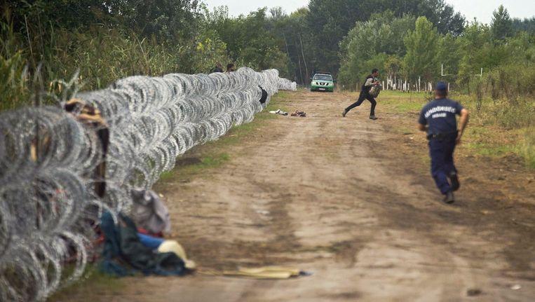 Een politieagent rent achter een migrant aan bij het hek op de grens tussen Hongarije en Servië. Beeld epa