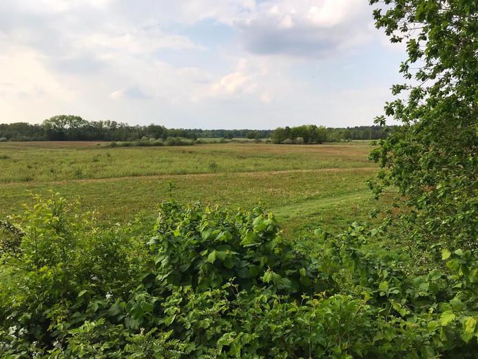 Uitzicht over een deel van het gebied waar gewandeld wordt. De bosrand ligt rondom het Plakkeven, dat zijn naam dankt aan de plakken turf die hier zijn afgegraven.