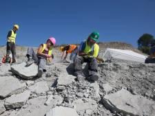 Winterswijkse steengroeve is dé snoepwinkel voor fossielenjagers: 'Het wonder der aarde'