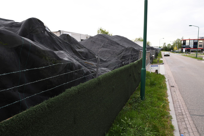 De stapels kunstgrasmatten bij Tuf Recycling werden op last van staatssecretaris Stientje van Veldhoven afgedekt en moeten daar blijven liggen totdat er zekerheid is over de verwerking.