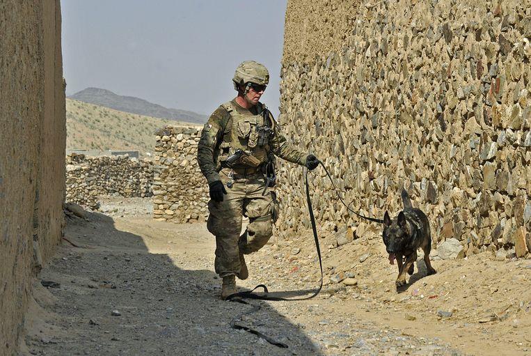 Een Amerikaanse soldaat op patrouille in Afghanistan met een hond die bommen moet opsporen. Beeld AFP