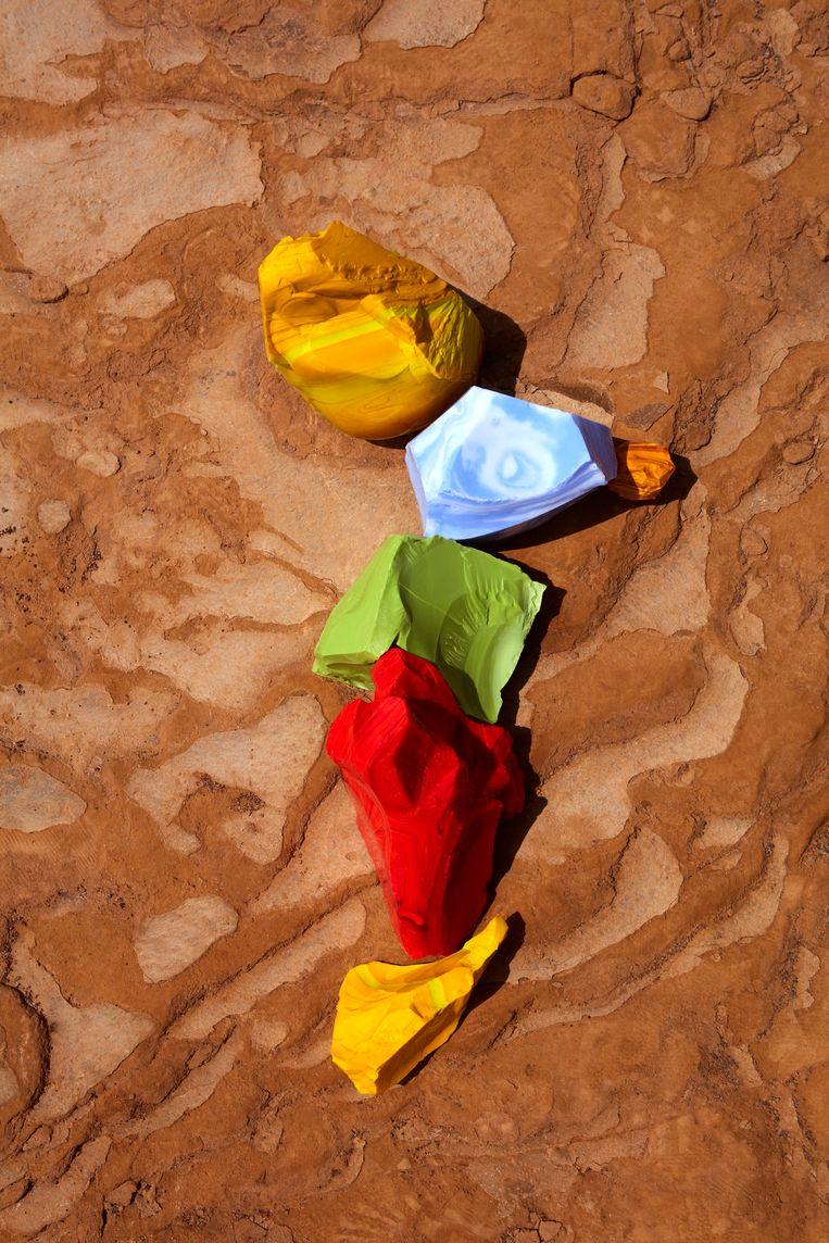 Yellow, Blue, Green and Red Cotisso in Paracas.  Beeld Lorenzo Vitturi