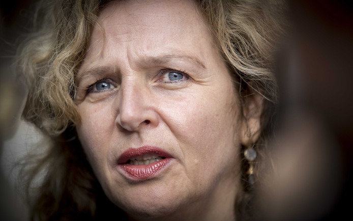 Minister Edith Schippers.