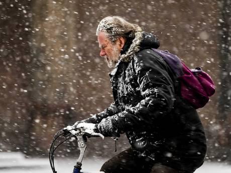 Het heeft gesneeuwd! Oost-Nederland onder wit laagje, waarschuwing voor gladheid