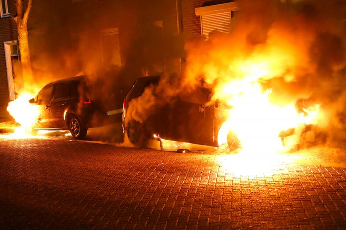 Auto's verwoest door brand in Oss