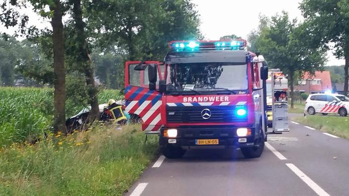 De brandweer wist de beknelde chauffeur uit de auto te bevrijden.