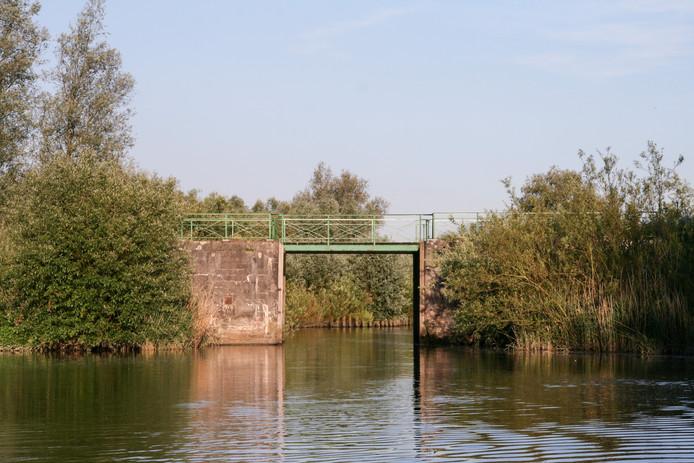 Het bruggetje van Sint Jan, een bekende plek in de Biesbosch.