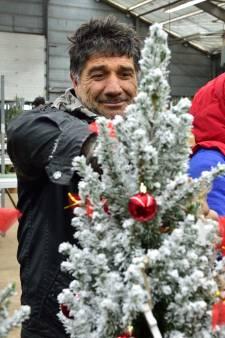 'We zitten hier tot onze nek in de kerstbomen'