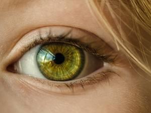 Poll: Mag iemand anders na je dood jouw ogen hebben?