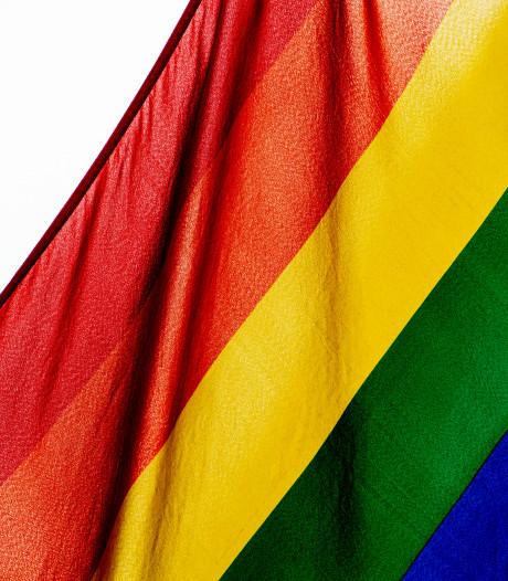 Zevenaar denkt na over regenboog-predicaat; andere gemeenten niet overstag