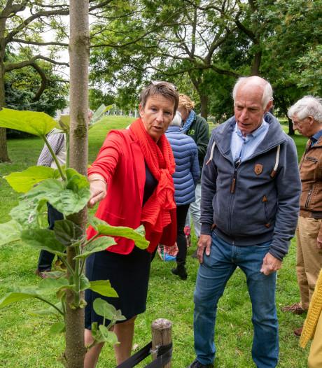 Ruiken, voelen en proeven: alles kan bij de bomenexcursie in het Galamapark in Elst