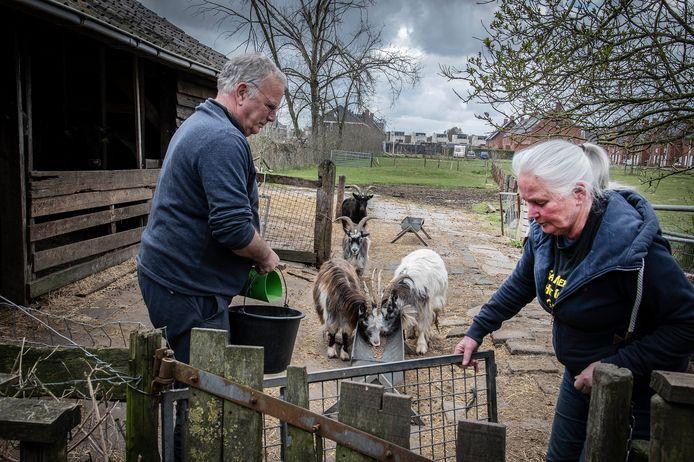 De familie Boink op hun grond aan de Mortel in Udenhout.