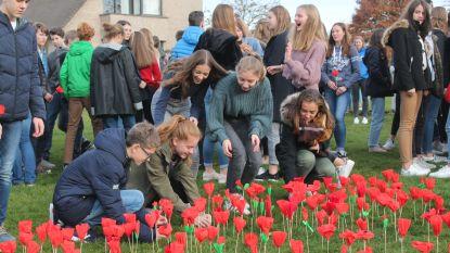 Leerlingen SGI herdenken Eerste Wereldoorlog met 1.400 klaprozen