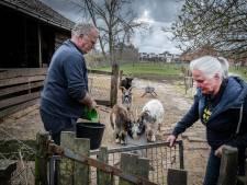 Tilburg start onteigeningsprocedure Den Bogerd in Udenhout