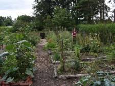 Mettre la nature et le climat au centre de votre jardin? Faites comme Marleen