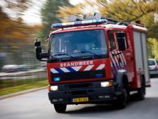 Natuurbrand in Hoogland snel geblust
