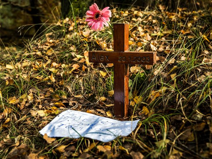 'Proces tegen Veghelse verdachte in Posbankmoord moet over'