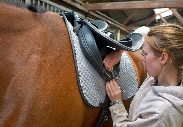 Een paardenstal. Foto ter illustratie.