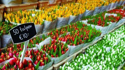 Nieuwe lifestylemarkt Bonne Bazaar zoekt standhouders