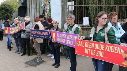 """Gemeente Balen ontgoocheld na overleg met Weyts over Olmense Zoo: """"Met kanon op mug schieten"""""""