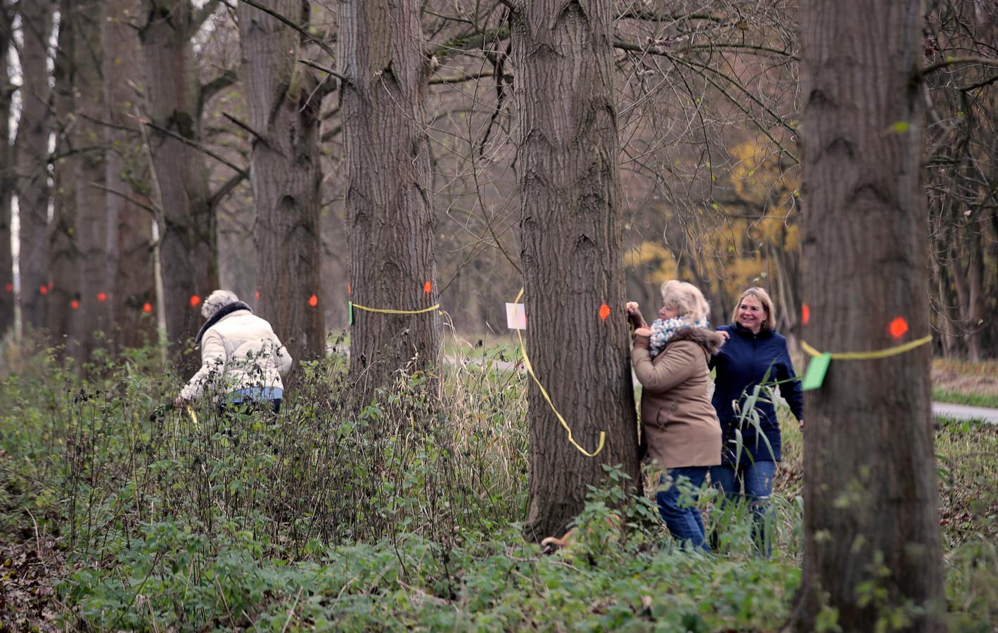 December 2018: Spijkenissers voeren actie tegen de bomenkap in het Mallebos.