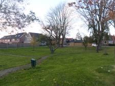 Meer zicht op realisering park bij de Looveling in Giessen