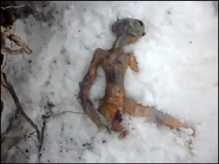Veel valse meldingen worden op het internet meteen ontkracht. Deze dode alien uit Rusland ging al snel viraal op het internet.