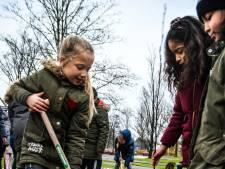 Eerste bomen van het nieuwe Krispijnbos geplant
