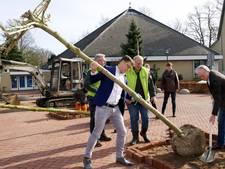 Bomen op het Kerkplein voor 175 jaar Slagharen