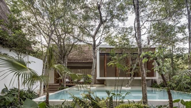 Voor deze lodge sneuvelden zo weinig mogelijk bomen (eentje staat zelfs in het zwembad)