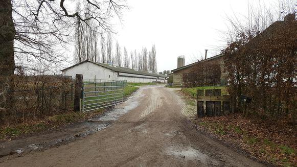 Recent werd een milieuvergunningsaanvraag ingediend om op deze locatie in de Struikstraat een gigantische varkensfabriek te vestigen.