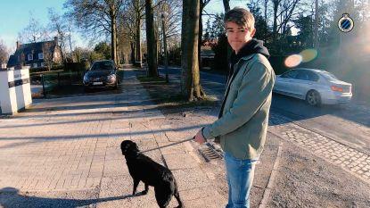 Een dag in het 'lockdown-leven' van Charles De Ketelaere: videogesprek met vriendin en wandeling met hondjes Basile en Jack