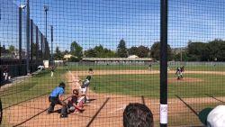 Gejuich van baseballouders verstomt wanneer plots duif opduikt