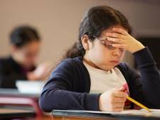 Speldenprik helpt basisonderwijs niet