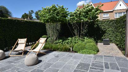 Hoeveel kost je nieuwe tuin en waarop kan je besparen? Onze experte geeft advies