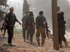 Gemist? 47-jarige Syriër uit Kapelle ook verdacht van executie | Agressief roofvogelpaar valt mensen aan in Ritthem