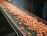 Europees topoverleg over eiercrisis om ruzies te beëindigen