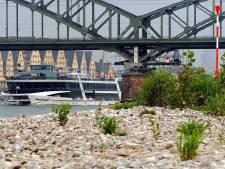 Grote opruimactie van oevers van Rijn