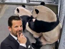 Jerry Goossens: In de San Diego Zoo gaat de camera op zwart, maar in Rhenen kunnen we meegenieten van pandaporno