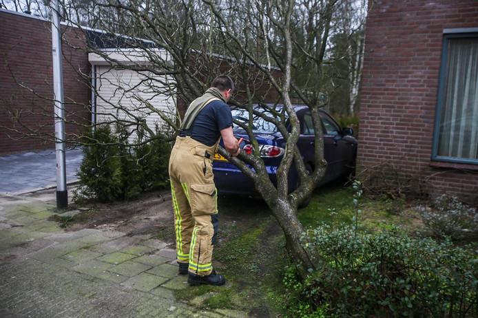 Aan het Volderhof in Helmond is een boom op een auto gevallen.