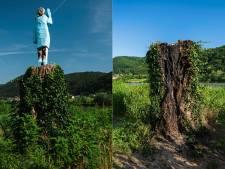 La statue en bois de Melania Trump incendiée en Slovénie