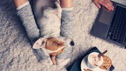 Bye bye winterblues: van deze gezonde comfortfood van Sandra Bekkari word je instant blij