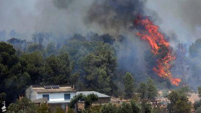 Gigantische bosbrand Catalonië wellicht ontstaan door vanzelf ontbrande mest in volle zon