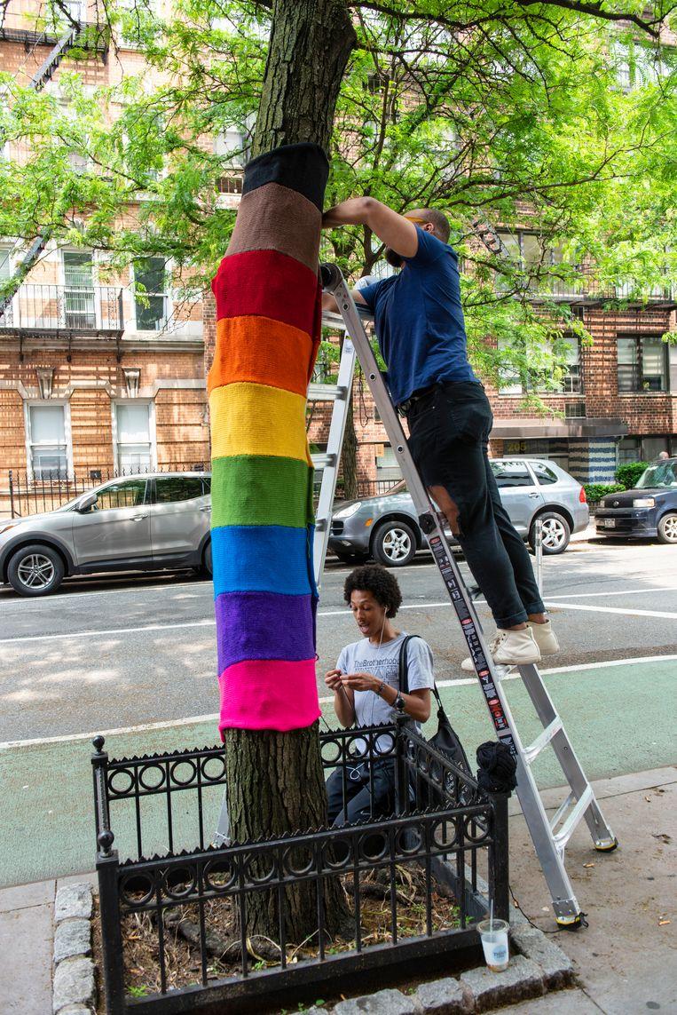 Een breiwerk om een boom in New York, als uiting van de lhbti-gemeenschap. Beeld Monique Jaques