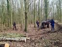 Hub von de Knolle bezig met zijn trekpaarden in het Oostkapelse bos.